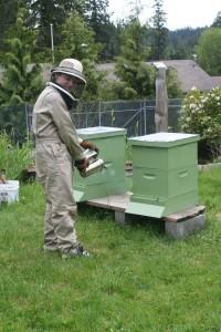 Garrett in his beekeeper duds